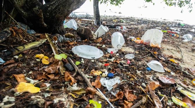 Caribbean Plastic Garbage